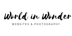 World In Wonder Logo